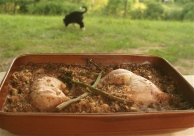 A Summery Chicken, Asparagus & Lemon Cassoulet