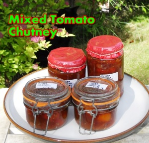 Mixed Tomato Chutney