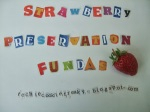 Strawberry-Fundas